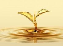 Food antifoaming agent based on vegetable oils - EMULTROL DFM OLV-55 FG
