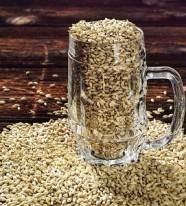Enzyme mạch nha sản xuất bia